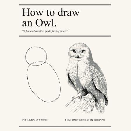 wpid-owl-2014-07-29-12-51-2014-07-29-12-51.jpg
